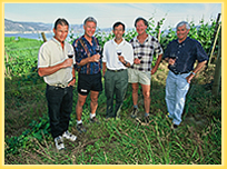 vineyards_growers